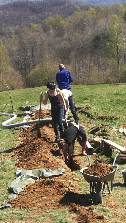 Und wieder buddeln: Graben für Abwasserleitung
